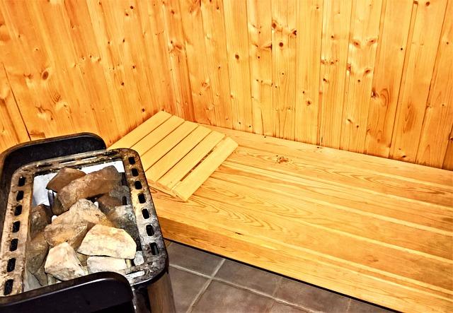 Sauna-heater
